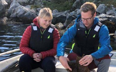 Seaweed Pilot – eit nytt prosjekt i Akvahub